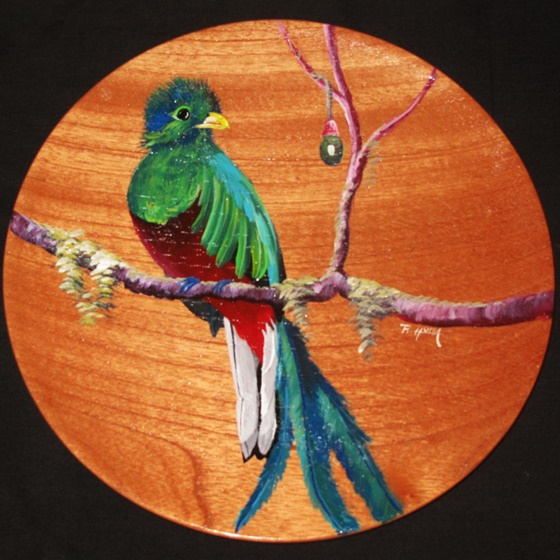 2017-12-30 Quetzal Plate Large